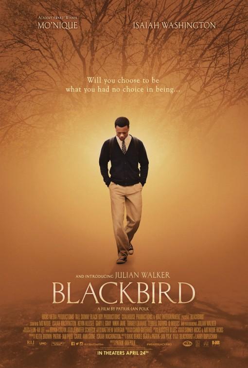 blackbird_ver2